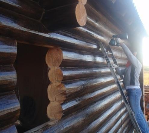zaschita-antiseptikom-drevesnih-konstrukciy