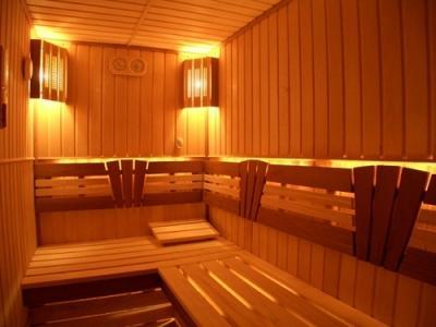 svetilniki dlja bani i sauny 1